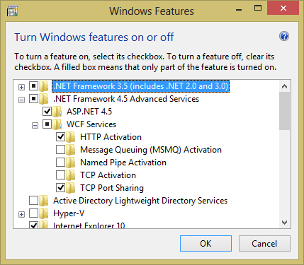 Enable .NET 4.5 WCF Services